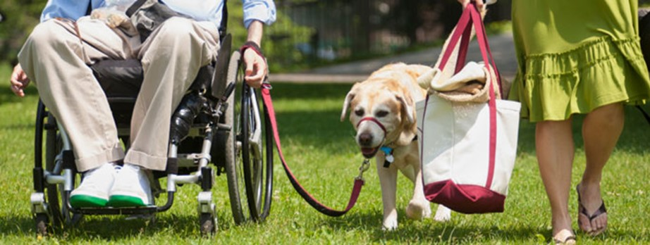 Wheelchair user with family